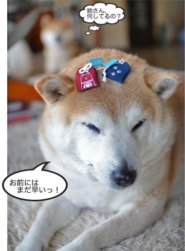 11日ブログ4.jpg