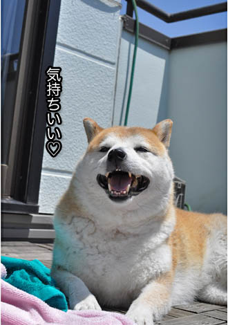 20日ブログ9.jpg