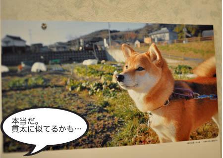 2日ブログ5.jpg