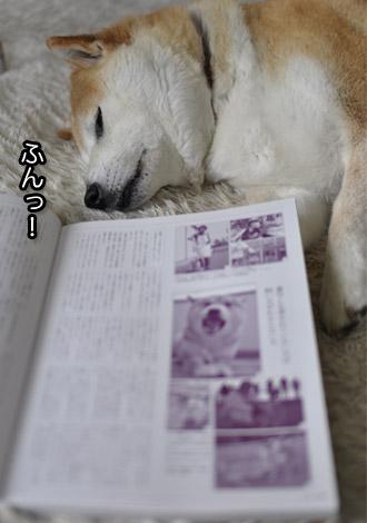 30日ブログ12.jpg