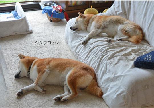 29日ブログ5.jpg