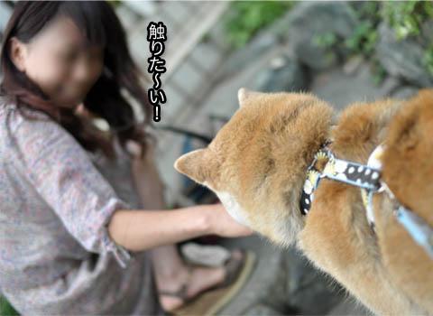 15日ブログ3.jpg