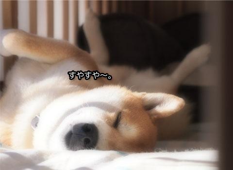 19日ブログ10.jpg
