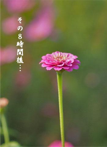 21日ブログ7.jpg