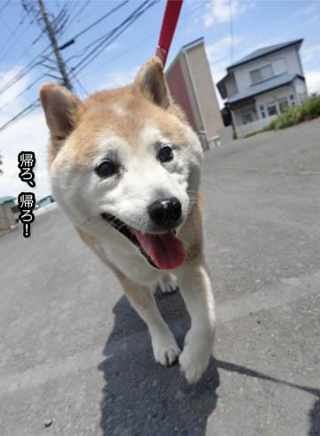 27日ブログ8.jpg