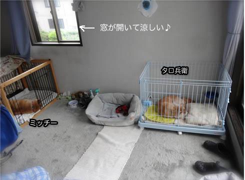 9日ブログ3.jpg