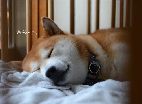 12日ブログ8.jpg
